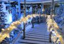Välkommen in i Birka Cruises vintervärld