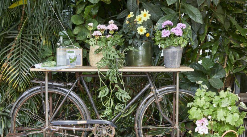 Vertikala trädgårdar och kreativa återbruksidéer