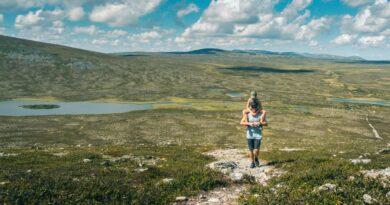 Fem vandringar i Grövelsjön